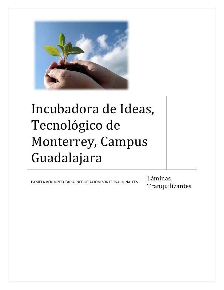 IncubadoradeIdeas, Tecnológicode Monterrey,Campus Guadalajara PAMELAVERDUZCOTAPIA,NEGOCIACIONESINTERNACI...