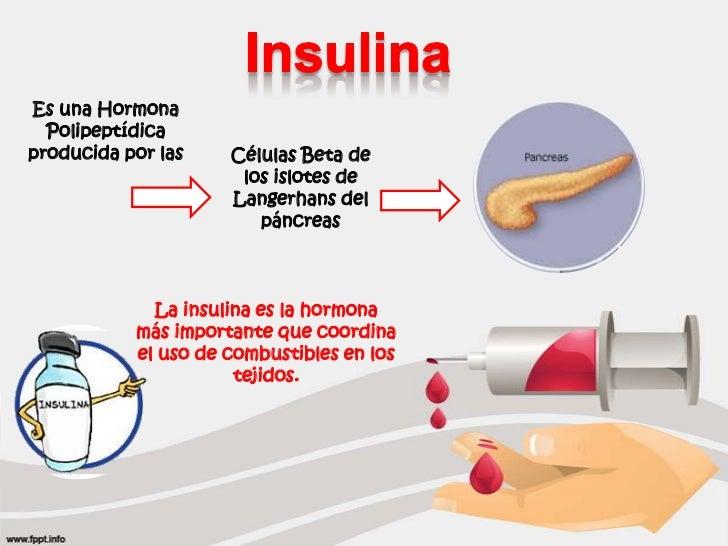 Efectos Metabólicos de la Insulina y el Glucagon