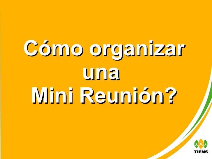Cómo organizar una  Mini Reunión?