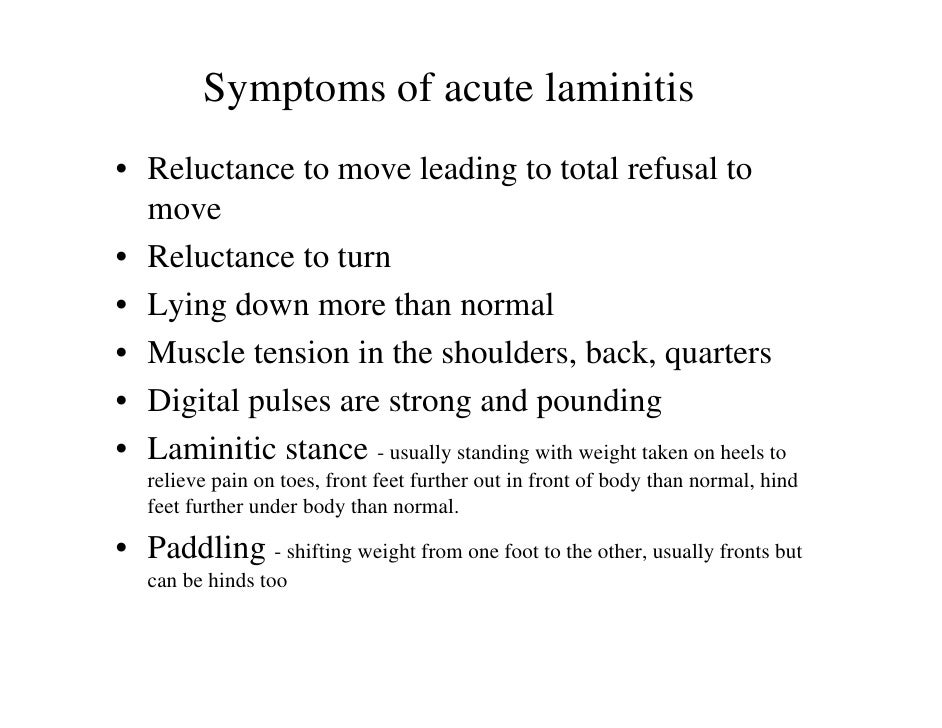 Laminitis Ir Ppid Causes And Treatment. Prohibition Signs Of Stroke. Purple Signs. Wild Animal Signs. Confession Signs Of Stroke. Boy Room Signs. Ice Cream Signs Of Stroke. Hydration Signs Of Stroke. Bed Signs