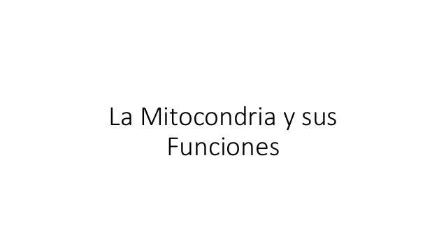 La Mitocondria y sus Funciones
