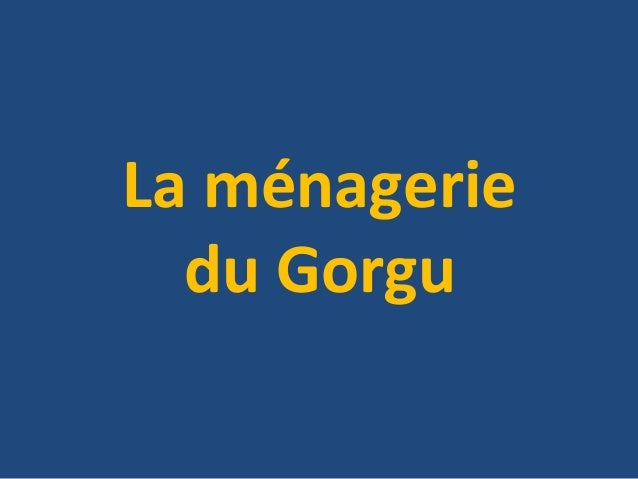 La ménagerie  du Gorgu