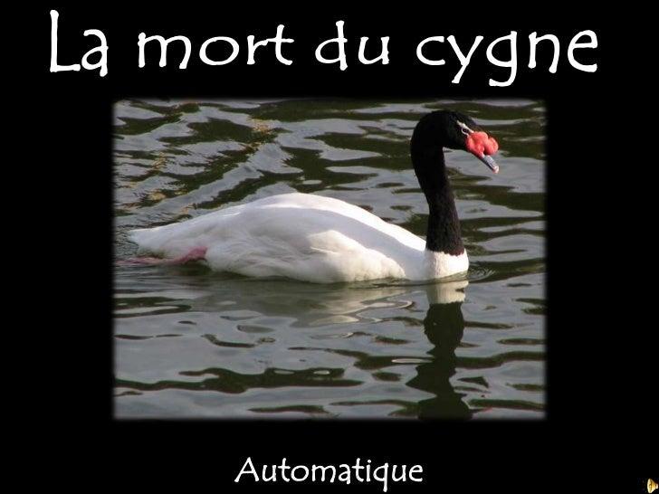 La mort du cygne<br />Automatique<br />