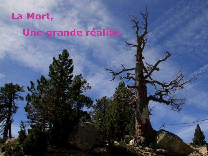 La Mort,  Une grande réalité.