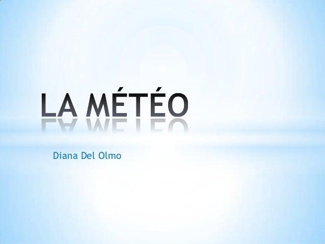 Diana Del Olmo