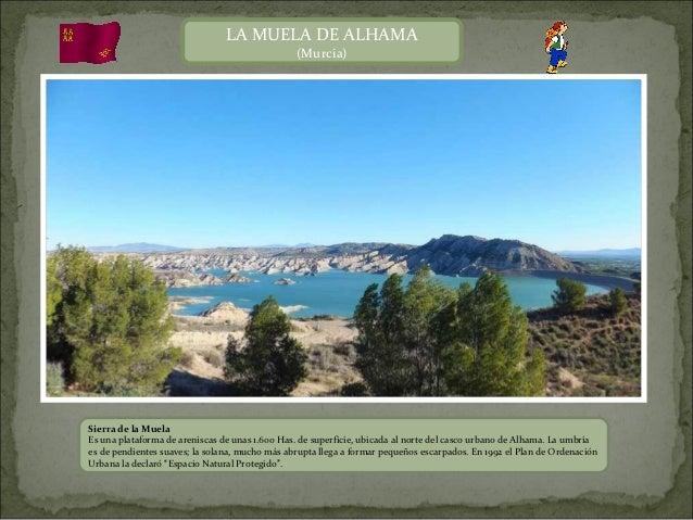 LA MUELA DE ALHAMA                                                (Murcia)Sierra de la MuelaEs una plataforma de areniscas...