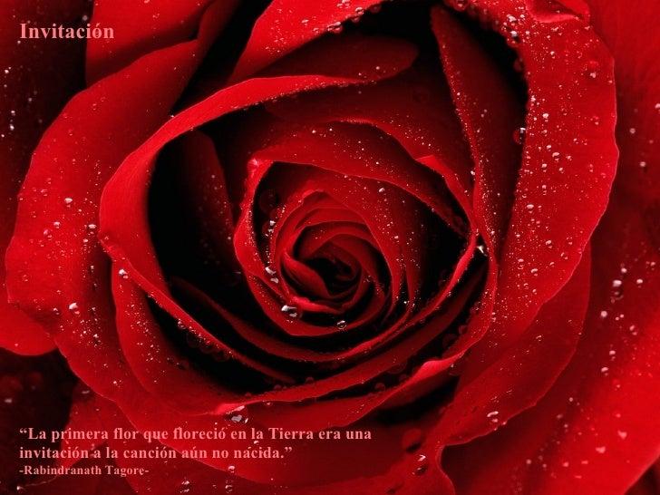 """Invitación """" La primera flor que floreció en la Tierra era una invitación a la canción aún no nacida.""""  -Rabindranath Tago..."""