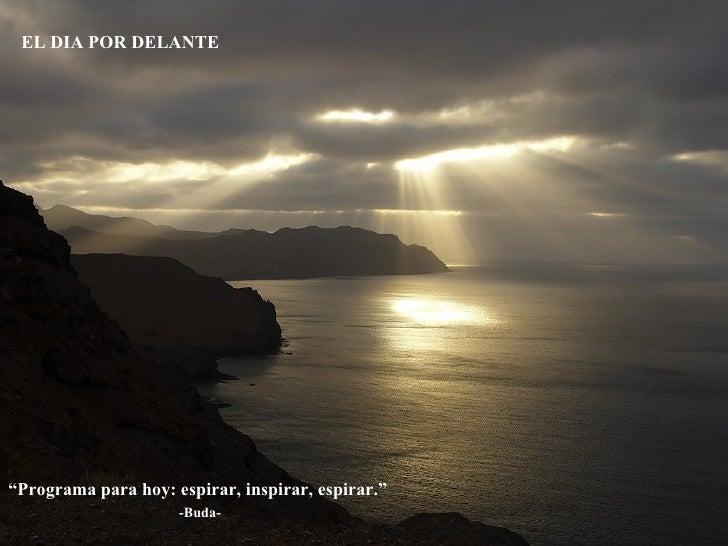 """ Programa para hoy: espirar, inspirar, espirar.""  -Buda- EL DIA POR DELANTE"