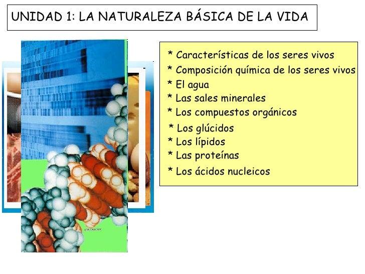 * Características de los seres vivos * Composición química de los seres vivos * El agua * Las sales minerales * Los compue...