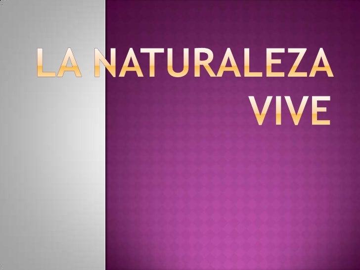 •ENNA TRES PALACIOS•JOSE LUIS BALLESTEROS•JASSID PEREZ
