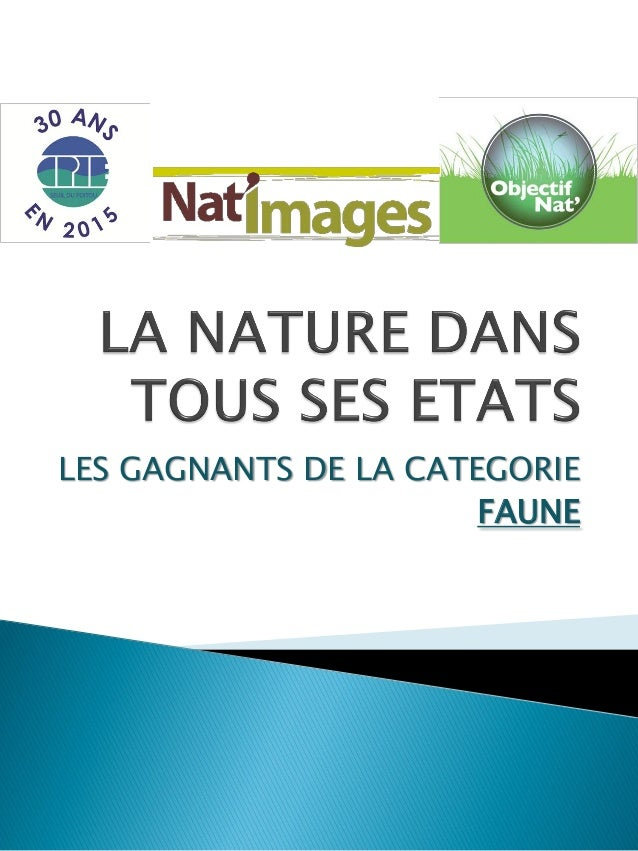 LES GAGNANTS DE LA CATEGORIE FAUNE