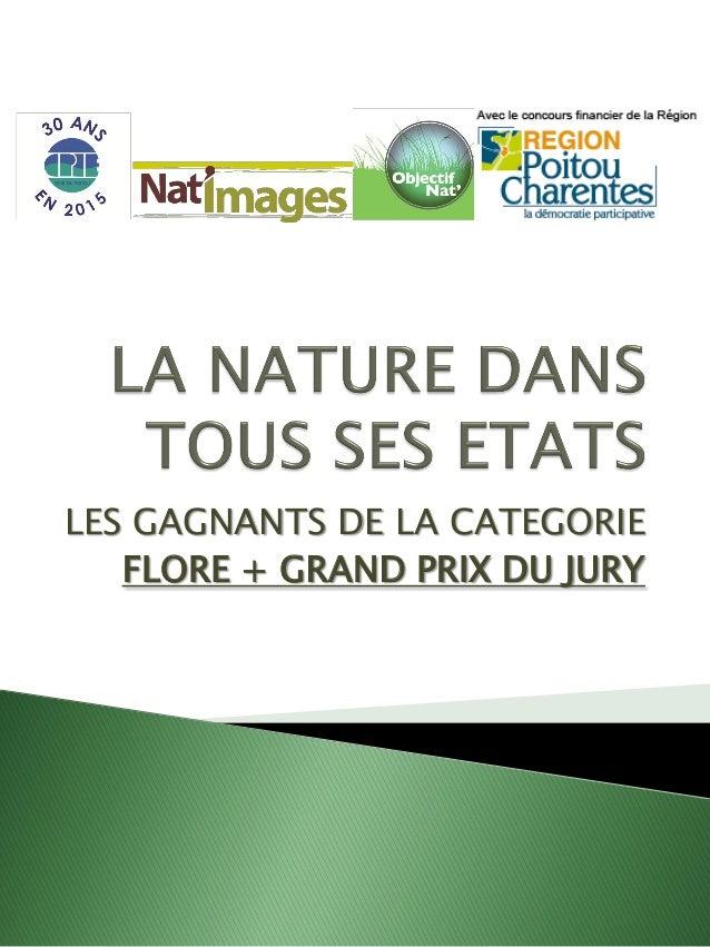 LES GAGNANTS DE LA CATEGORIE FLORE + GRAND PRIX DU JURY