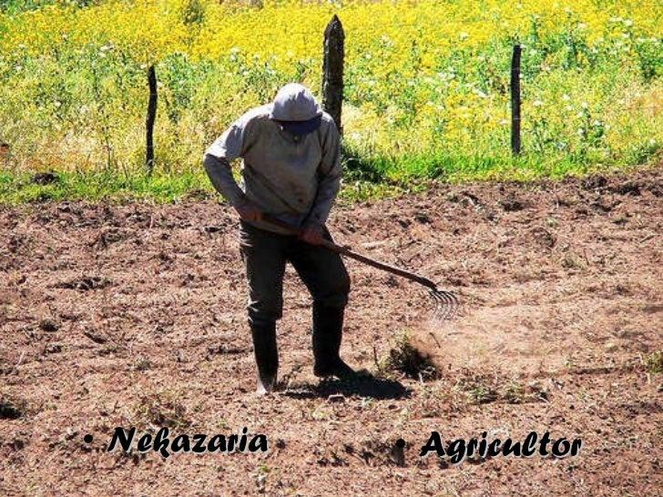 <ul><li>Nekazaria </li></ul><ul><li>Agricultor </li></ul>