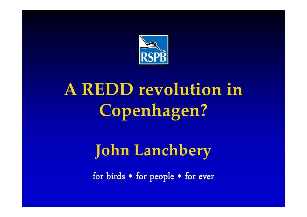 A REDD revolution in    Copenhagen?     John Lanchbery    for birds • for people • for ever