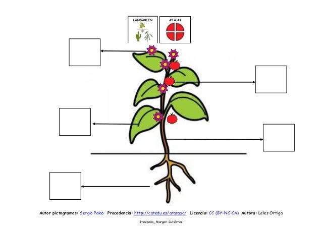 LANDAREEN  ATALAK  Autor pictogramas: Sergio Palao Procedencia: http://catedu.es/arasaac/ Licencia: CC (BY-NC-CA) Autora: ...