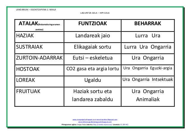 LANDAREAK – EGOKITZAPENA 2. MAILA LAGUNTZA GELA – HIPI GELA  ATALAK  FUNTZIOAK  BEHARRAK  HAZIAK  Landareak jaio  Lurra Ur...