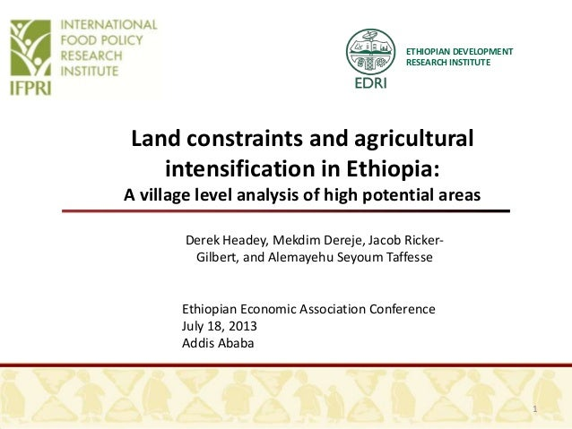 ETHIOPIAN DEVELOPMENT RESEARCH INSTITUTE Land constraints and agricultural intensification in Ethiopia: A village level an...