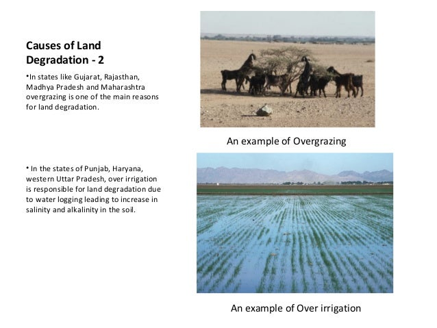 Effects of Land Degradation on Soil Fertility: A Case Study of Calabar South, Nigeria