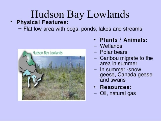 What Are Some Of Canada S Natural Resources