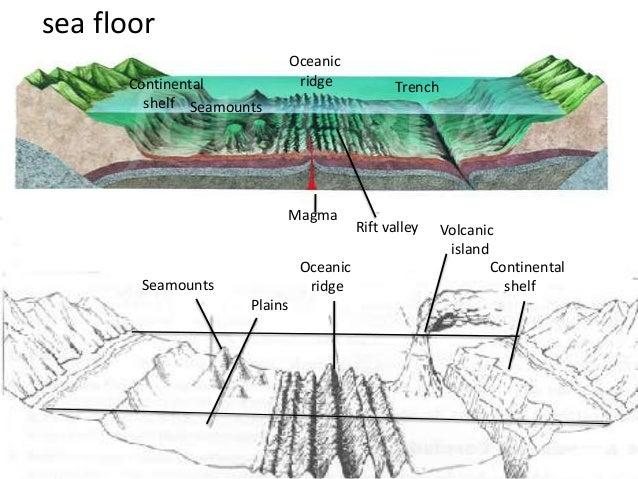 Features of the ocean floor worksheet rringband for Ocean floor zones diagram