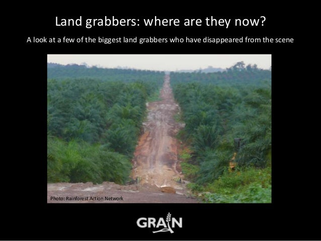 Land grabbers: where are they now? A look at a few of the biggest land grabbers who have disappeared from the scene Photo:...