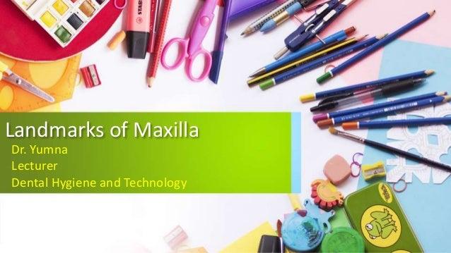 Landmarks of Maxilla Dr. Yumna Lecturer Dental Hygiene and Technology