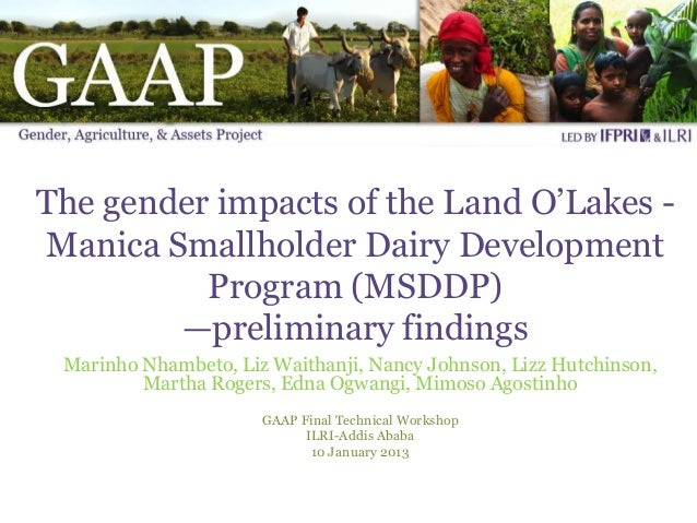 The gender impacts of the Land O'Lakes -Manica Smallholder Dairy Development          Program (MSDDP)        —preliminary ...