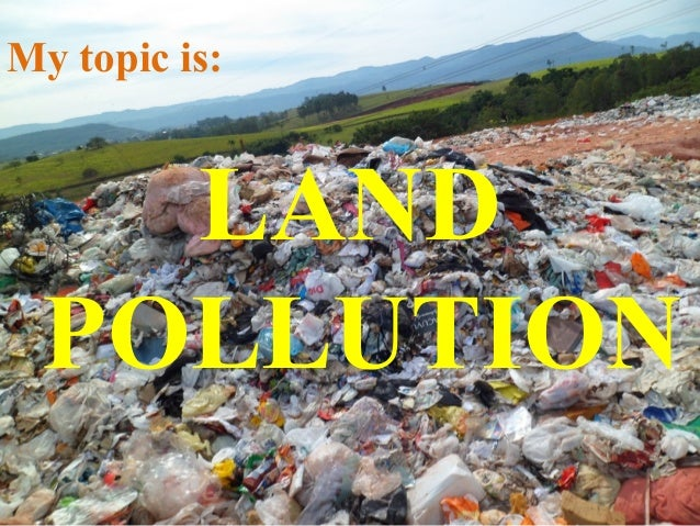 Introduction Pollution Paper