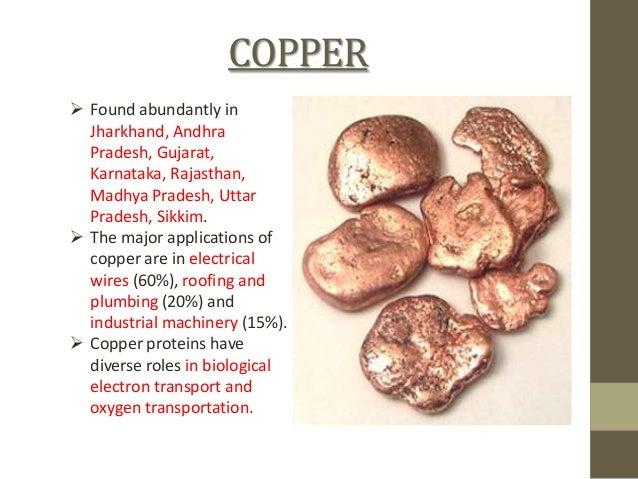 Natural Resources Found In Andhra Pradesh