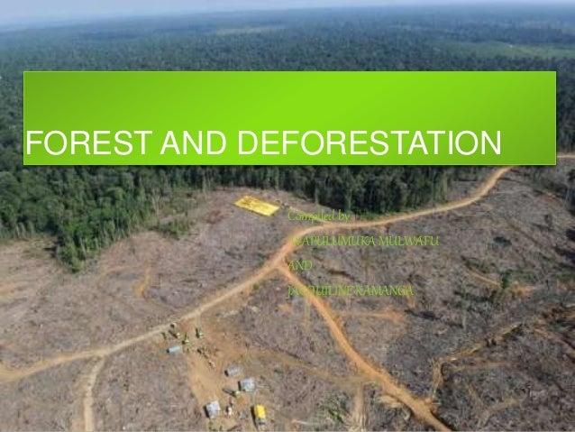 FOREST AND DEFORESTATION Compiled by WAPULUMUKA MULWAFU AND JACQUILINE KAMANGA