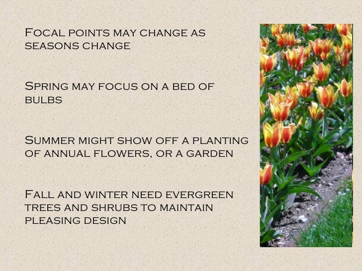Focal points may change as seasons change Spring may focus on a bed of bulbs Summer might show off a planting of annual fl...