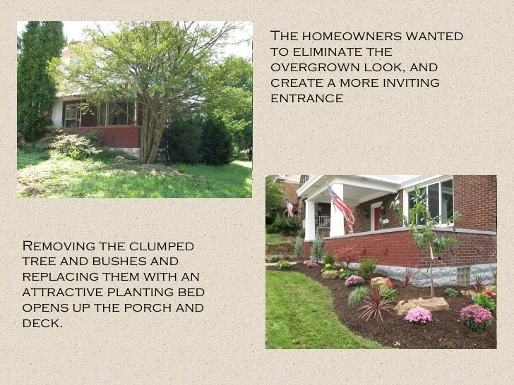 The homeowners wanted to eliminate the overgrown look, and create a more inviting entrance Removing the clumped tree and b...