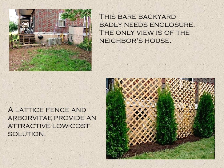 This bare backyard badly needs enclosure. The only view is of the neighbor's house.  A lattice fence and arborvitae provid...