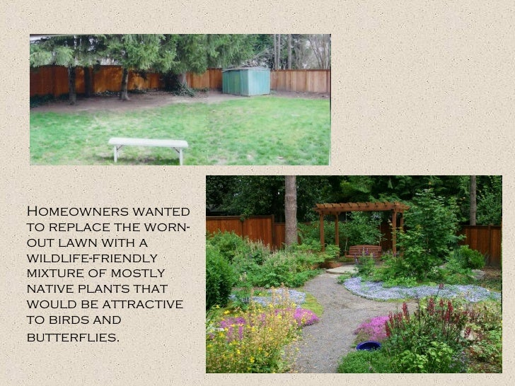 Homeowners wanted to replace the worn-out lawn with a wildlife-friendly mixture of mostly native plants that would be attr...