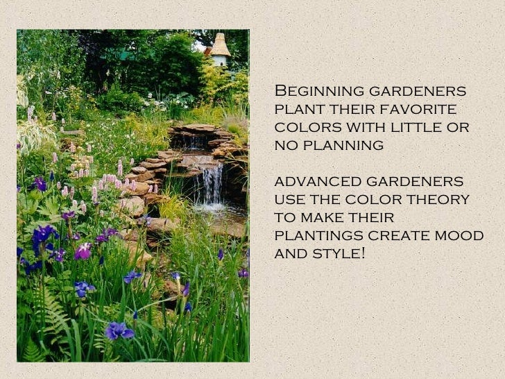 Beginning gardeners plant their favorite colors with little or no planning  advanced gardeners use the color theory to mak...