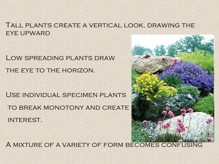 Tall plants create a vertical look, drawing the eye upward Low spreading plants draw  the eye to the horizon. Use individu...