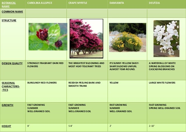 BOTANICAL NAME STRUCTURE DESIGN QUALITIES SEASONAL CHARACTERS OTHER QUALITIES ECOLOGICAL VALUES GROWTH CLIMATE SOIL SPAN,H...