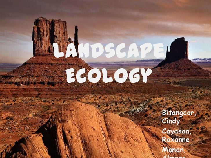 Landscape Ecology        Bitangcor,        Cindy        Cayasan,        Roxanne        Manan,