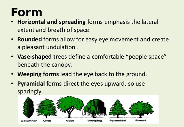 Architectural Form Definition