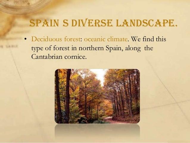 • Alpine landscape: mountain climate, Pyrenees, Cordillera Cantábrica and Sistemas Béticos.