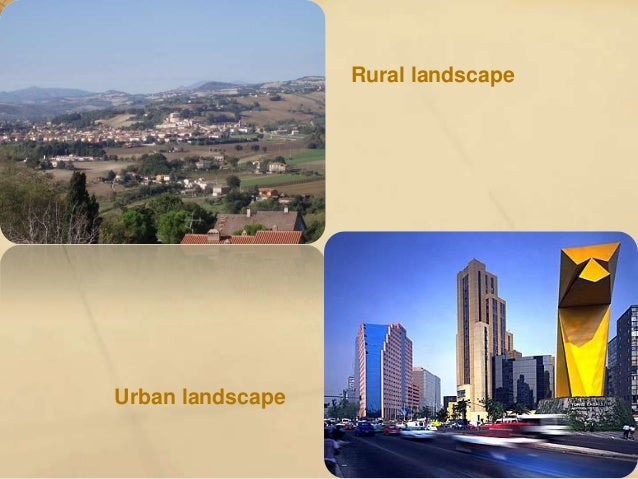 • Mediterranean forest and scrubland : mediterranean climate. We can find it in most areas of the Iberian peninsula and in...