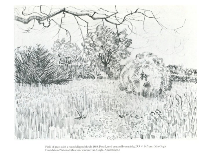 Line Drawing Examples : Landscape line drawings sketch examples
