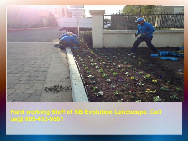 Landscape Maintenance Tips By Sb Evolution Landscape