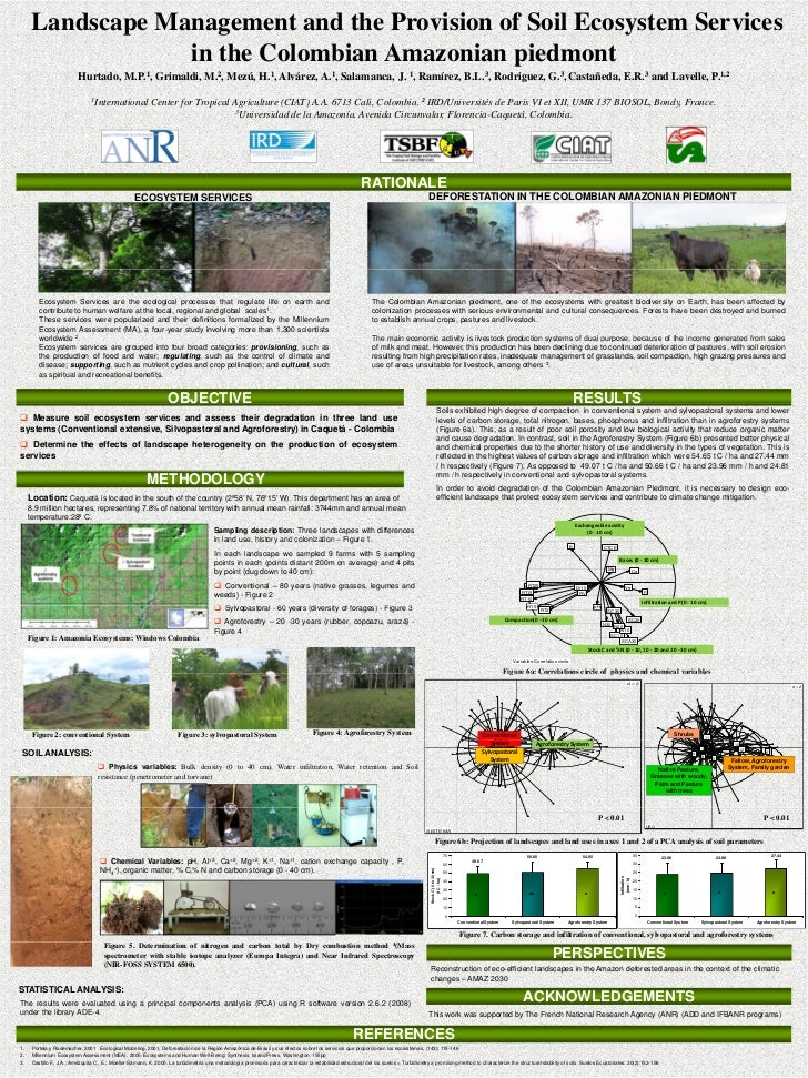 Landscape Management and the Provision of Soil Ecosystem Services                   in the Colombian Amazonian piedmont   ...