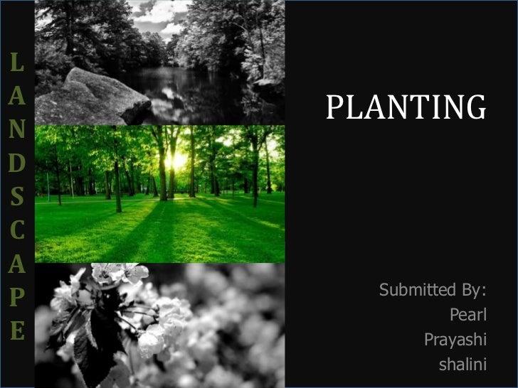 LA    PLANTINGNDSCA      Submitted By:P              PearlE         Prayashi             shalini