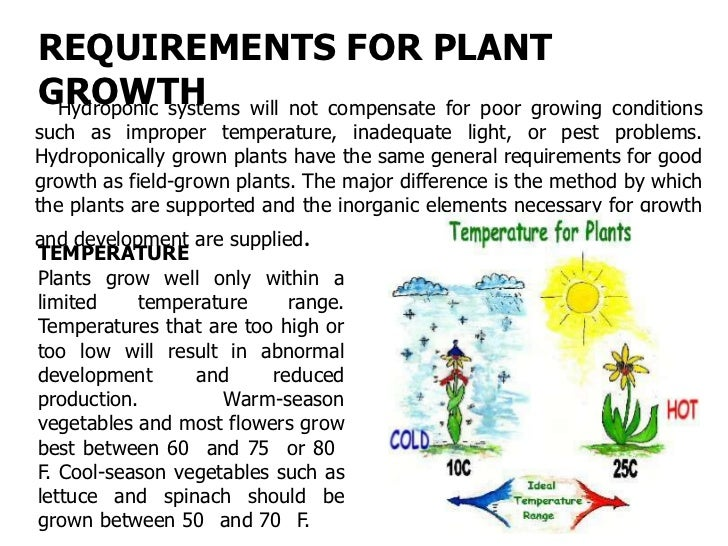 LIGHT   All vegetable plants and many flowers require large amounts ofsunlight. Hydroponically grown vegetables like those...