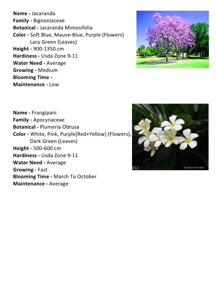 Landscaping Design - Best of ppt flowers scheme