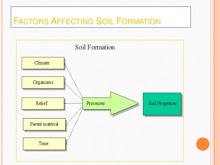 Land soil water natural vegetation for Soil forming factors