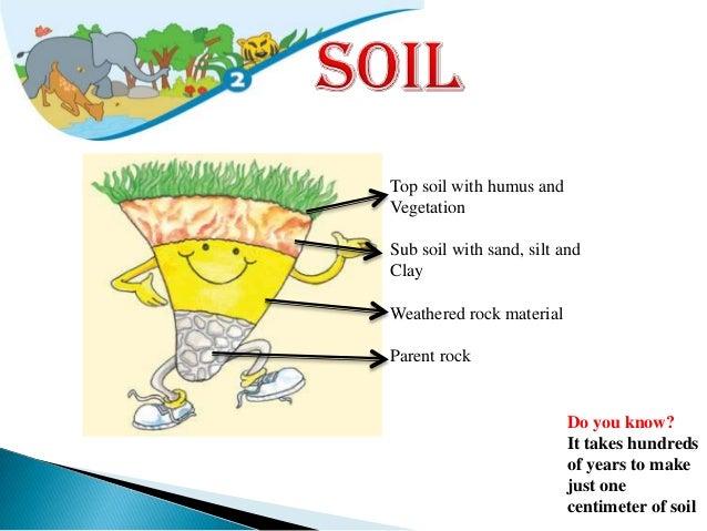 Soil and natural vegetation