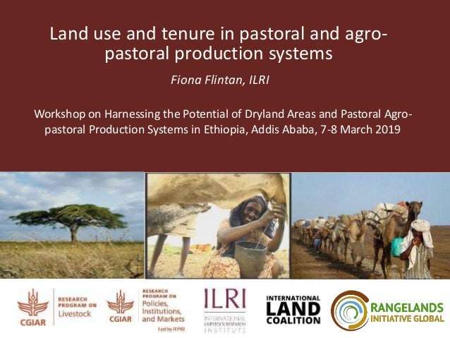 Land use and tenure in pastoral and agro- pastoral production systems Fiona Flintan, ILRI Workshop on Harnessing the Poten...